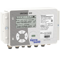 Unigas300